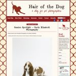 San Diego pet photographer featured in hair of the dog blog