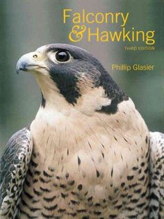 In this third edition of his classic guide to training, caring for, and hunting with falcons and hawks, Phillip Glasier, an experienced teacher of falconry, continues to provide the best, most detaile