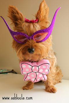 Ooh Leela!: The cutest, sturdiest dog toy: PrideBites™