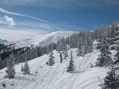 winterwonderland in the Alps - Zell am See-Kaprun