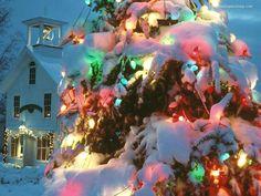 NOEL : i wish you merry christmas  fete-de-noel-12