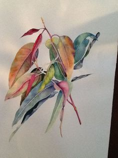 Fruit Illustration Watercolour Flower Paintings 45 Ideas For 2019 Watercolor Leaves, Abstract Watercolor, Watercolor And Ink, Watercolor Paintings, Watercolor Landscape, Flower Paintings, Watercolours, Botanical Drawings, Botanical Illustration