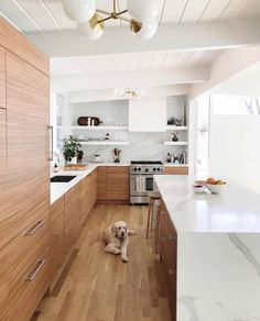 Kitchen dream design by greyandscout including her adorable pup amp; our Compass 8 lights built with hang-straights for Lizs sloped ceilings. Home Decor Kitchen, Interior Design Kitchen, New Kitchen, Home Kitchens, Kitchen Dining, Kitchen Layout, Modern Kitchens, Island Kitchen, Kitchen Modern