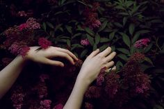 The hands of springtime - Persephone Miss Moss, Estilo Grunge, Hades And Persephone, Skyrim, Photoshop, In This Moment, Pretty, Image, Aesthetics