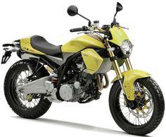 10 Triumph Motorcycles Ideas Triumph Motorcycles Motorcycle Triumph