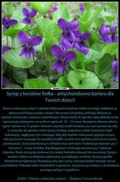 Herbs, Health, Plants, Art, Salud, Health Care, Herb, Flora, Kunst