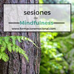 Mindfulness en Barcelona www.formacionemocional.com