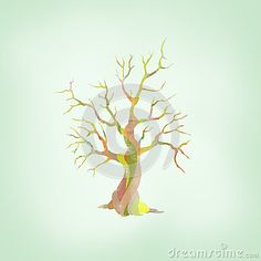 Illustration of a Tree with a special bark