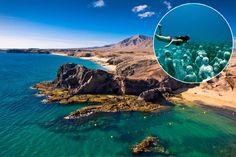 Lanzarote bekommt erstes Unterwassermuseum Europas