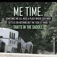 Horse Memes Westernreiten Tiere Englisch Reit Zitate Pferde Madchen Pferdeliebe