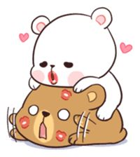 Two bears who fell in love