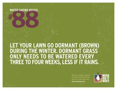 Water-Saving Tip No. 88: Let your lawn go dormant (brown) during the winter. Dormant grass only needs to be watered every three to four weeks, less if it rains. For more water-saving tips visit http://wateruseitwisely.com/