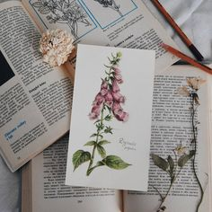 Fairy foxglove. 🌼 #vsco #vscocam #craft #illustration #summer #June #nature #drawing #analog #liveautentic #livefolk #botanical #books #flowers #livethelittlethings #herbarium #livegreen #painting #folk