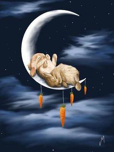 Rabbit sleeping with the moon.
