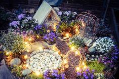 Twinkling Gardencountryliving