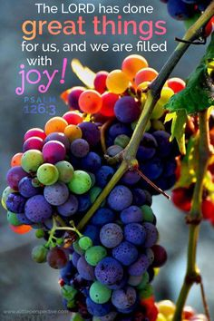 The LORD has done great things for us, and we are filled with joy! Psa 126:3 <3