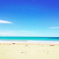 Anglesea Great Ocean Road #anglesea #urquartsbluff #greatoceanroad #victoria #beach #aussiespring #australia by eilish_o http://ift.tt/1KosRIg