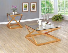 2 PC Furniture of America Zoya Collection Coffee Table & End Table Set CM4121
