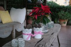 #navidad #christmas #piñas #pascuas #eco #slow #lascalas