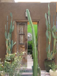 The beautiful doors of the Old Pueblo - Tucson, Arizona - USA * Tucson Doors - Ron's Photography Adventure