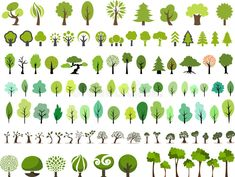 Illustration about Vector set of trees with different stlye in white background. Illustration of forest, floral, environment - 44249488 Flat Design Illustration, Illustration Vector, Plant Illustration, Landscape Illustration, Botanical Illustration, Color Vector, Vector Art, Vector File, Vector Trees