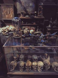 Harry Potter skulls