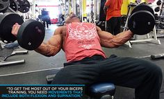 Get Big Arms: Noah Siegel's Sleeve-Busting Workout - Get Big Arms - Bodybuilding.com