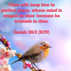 Isaiah Thou wilt keep him in perfect peace, whose mind is stayed on thee: because he trusteth in thee. King James Bible Verses, Bible Verse Art, Christ In Me, Jesus Christ, Isaiah 26 3, Perfect Peace, Jesus Resurrection, Meaning Of Love, Walk By Faith