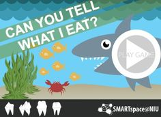 Learn about carnivores, herbivores, and omnivores by playing this interactive, educational game.
