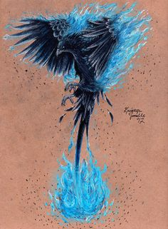 Phoenix by KristynJanelle.deviantart.com  nice                                                                                                                                                     Más