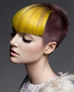 Mana Dave, Blaze, NZ POST YOUR FREE LISTING TODAY!   Hair News Network.  All Hair. All The Time.  http://www.HairNewsNetwork.com