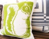 squirrel pillow...totally random but I like it for some reason