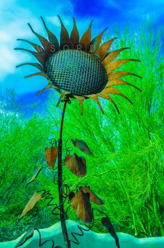 Metal Sunflower Photo Credit: Michael Moriarty Photography
