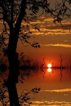 Flood Sunset by Alejandro Miranda Lines