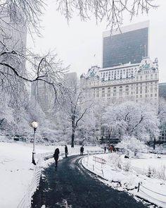 #fotografia #fotos #fotografo #cursofotografia / Fotos, Dicas, Curso e e-books… #fotografia #fotos #fotografo #cursofotografia #photography Winter Szenen, New York Winter, Winter Time, New York Snow, Nyc Snow, Winter Magic, Central Park New York, Wonderful Places, Beautiful Places