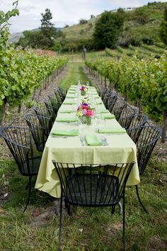 Outdoor dining in the vineyard. Outdoor Dining, Indoor Outdoor, Outdoor Decor, Outdoor Spaces, Wine Vineyards, Le Diner, Al Fresco Dining, Vineyard Wedding, Wine Country