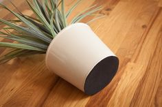 cover the base of plant pots, lamps and vases with d-c-fix® velour to prevent surface scatches