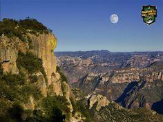BARRANCAS DEL COBRE te dice En la zona alta de la cascada de piedra volada En cuanto a su fauna, habitan numerosas especies de aves, entre las que destacan el águila, los pájaros carpinteros, el guajolote silvestre y el pájaro coa, uno de los más bellos de la Sierra , y considerado en peligro de extinción. www.chihuahua.gob.mx/turismoweb