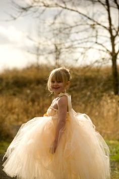 Champagne Tutu Dress   for Flower Girls by littledreamersinc, $60.00