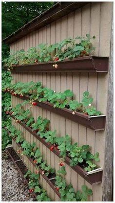 Comfy Diy Raised Garden Bed Ideas That Looks Cool – Raised garden beds diy – Garden Arts Unique Garden, Modern Garden Design, Modern Design, Garden Art, Patio Design, Fence Design, Garden Types, Garden Paths, Garden Cottage