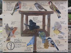 Amelie, Diy And Crafts, Birds, Education, School, Painting, Animals, Nature, Animales