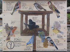 Ptáci v zahradě