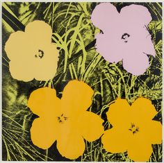 Andy Warhol | Flowers (II.67) (1970) | Available for Sale | Artsy                                                                                                                                                                                 More