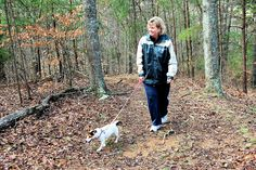 Virginia State Parks are pet friendly!