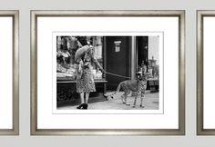 TROWBRIDGE Gallery - Cheetah Who Shops  (Link: http://www.trowbridgegallery.com/black-white-archive-zoom.php?TGAImageCode=27&FrameCode=965&Keyword=&BestAll=&MainType=ShowAll&MainCategorySearch=-1&SearchYear=-1&FrameType=)