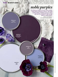 Noble Purples Paint Color Palette. The Pantone Colour of 2018, Ultra Violet, looks best as found in nature. Pair with chalky whites, feathery greys or deep garnets for a scheme that can go bold or softly poetic. Paint Colors Used: Nippon Paint Spring Lilac Manish Malhotra for Dulux Bejewelled Nerolac Amherst Fog British Paints Violet…