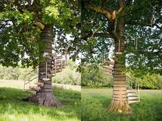 Thor ter Kulve and Rob McIntyre's CanopyStair is a set of modular steps that form a spiral staircase around a tree, complete with a handrail. Backyard Trees, Backyard Playground, Tiny Cabins, Climbing Wall, Tree Tops, In The Tree, Garden Bridge, Garden Landscaping, Funny Pictures
