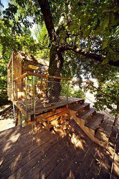 Baumraum   Galerie   Baumhäuser   Pinterest   Zuhause Und Galerien Das Magische Baumhaus Von Baumraum