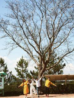 Đà Lạt sở hữu nhiều địa điểm vui chơi, check-in sống ảo nhiều và hút du khách nhất Việt Nam. Còn là thiên đường của các homestay view núi đồi đẹp huyền bí....