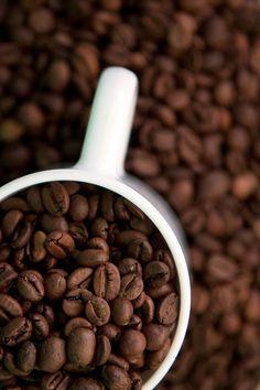 Coffee - Coffee
